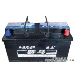 供应免维护汽车蓄电池