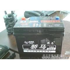 供应汽车免维护电池